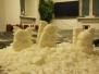 05.02.2015r. Warsztaty rzeźbienia aniołków w mydle