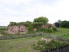 ruiny-zamku-arcybiskupw-w-owiczu